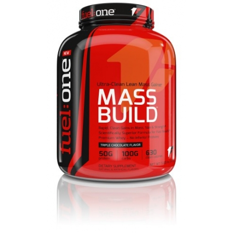Fuel One Mass Build